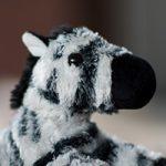 Small Zebra